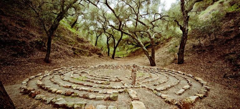Vejen til helhed gennem doshabalance