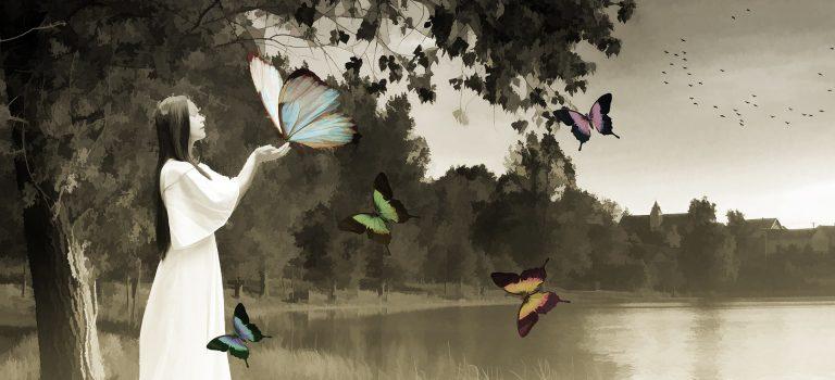 2017 – lad sommerfuglene flyve!
