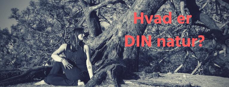 DIN dosha test – og vej til at leve i harmoni med DIN natur!